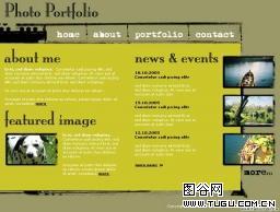 图片相关_FLASH网页模板