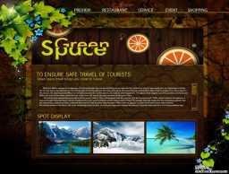 个性国外旅游网站