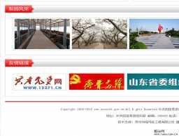 政府网站事业单位红色网页模板